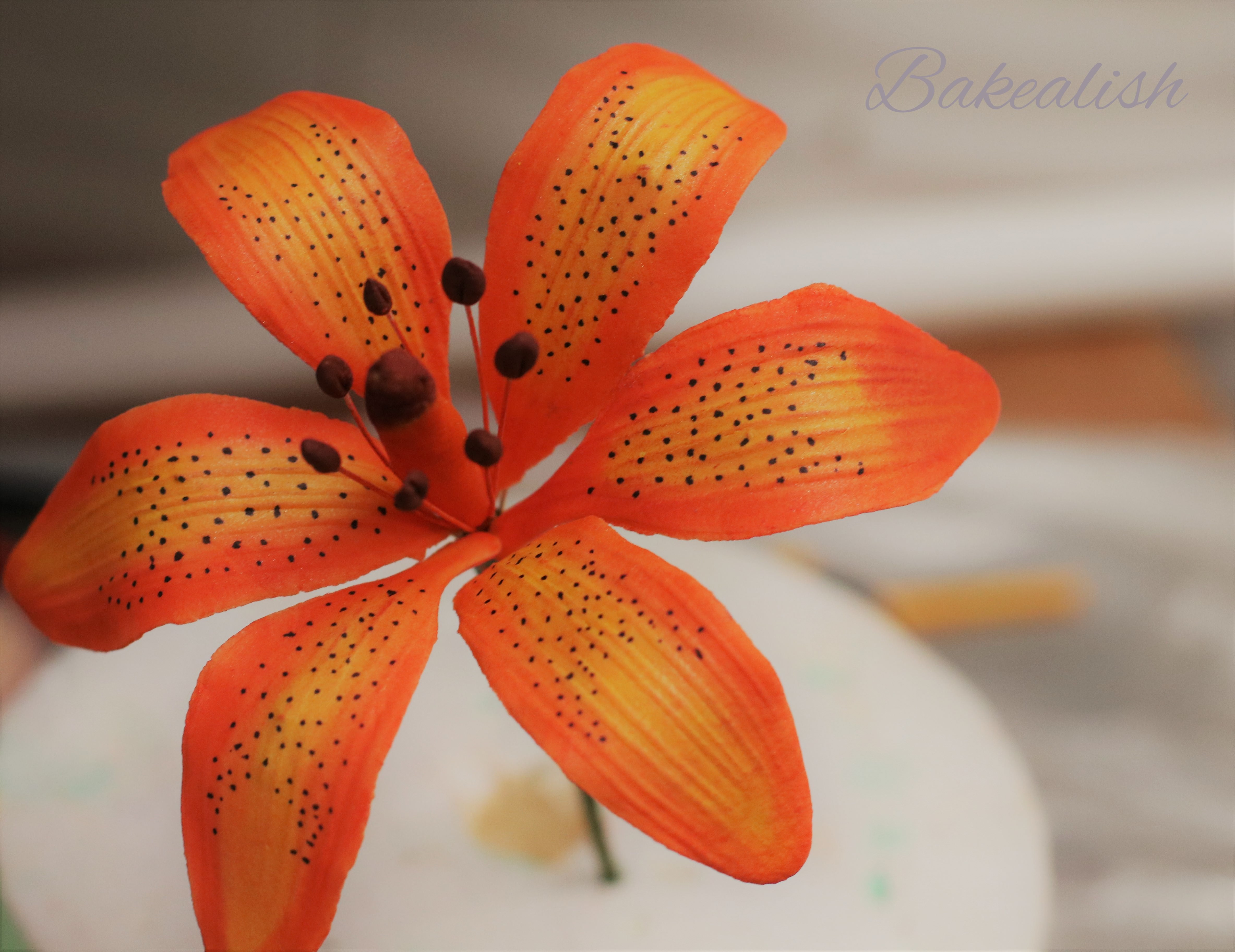 Learn how to create some breathtaking realistic looking sugar flowers with us at Bakealish in this Workshop on Exotic Sugar Flowers