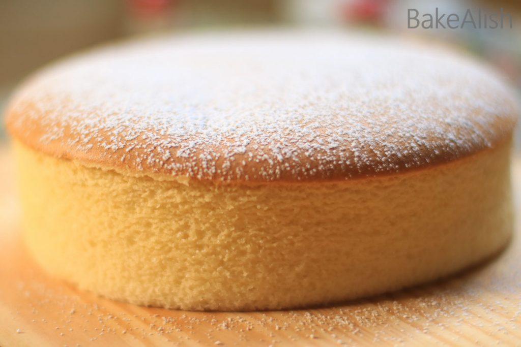 Workshop On Japanese Cheesecake